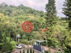 中国台湾的房产,Zhuangding Rd. Shilin Dist.,编号41097308