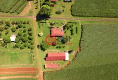 澳大利亚昆士兰Green Hill的乡郊地产,编号31642143