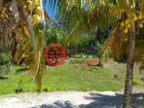 洪都拉斯海湾群岛瓜納哈島的土地,Beachfront Lot-VA La Giralda,编号36492143