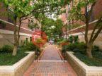 美国马萨诸塞州波士顿的房产,380 Beacon Street,编号41818580
