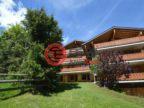 瑞士的房产,编号48995783