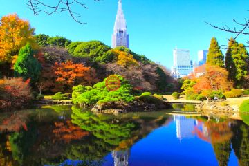 居外网在售日本TokyoJPY 230,000,000总占地247平方米的土地