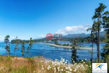 居外网在售加拿大维多利亚CAD 399,900总占地1016平方米的土地