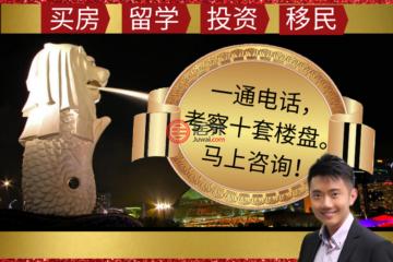 居外网在售新加坡4卧6卫的公寓总占地26210平方米SGD 17,566,700