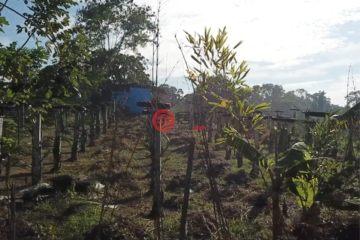居外网在售菲律宾阿方索PHP 3,000,000总占地1000平方米的土地