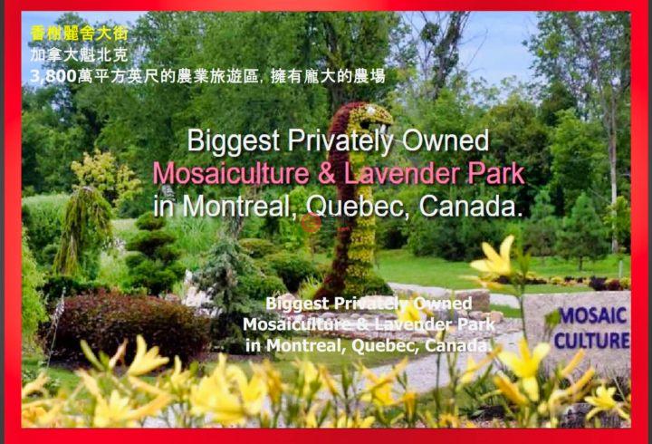加拿大魁北克Vaudreuil-Dorion的商业地产,1620 Chemin Daoust,编号53133477